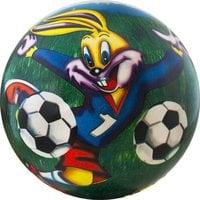 Мяч детский Веселый футбол арт.DS-PP 167 23 см, синий