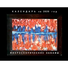 """Календарь """"Микроскопические забавы"""" на 2020 год. С.В. Савельев"""