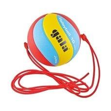 Мяч волейбольный на растяжках Gala Jump BV5481S р.5