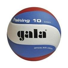 Мяч волейбольный Gala Training 10 арт. BV5561S р. 5