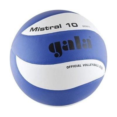 Покупка  Мяч волейбольный Gala Mistral 10 арт. BV5661S р. 5   в магазине IntexRelax с доставкой или самовывозом